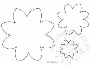 Five Petal Flower Template Flowers Coloring Page
