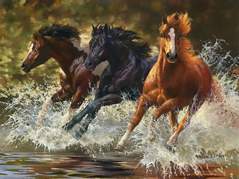 art water animal horses group backgroundswindows