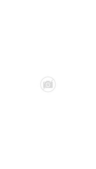 Fantastic Beasts Harry Potter Anime Newt Tina
