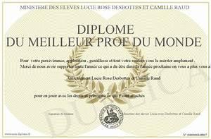 Meilleur Oreiller Du Monde : diplome du meilleur prof du monde ~ Melissatoandfro.com Idées de Décoration