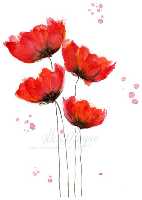 watercolor poppies  pinterest poppies painting
