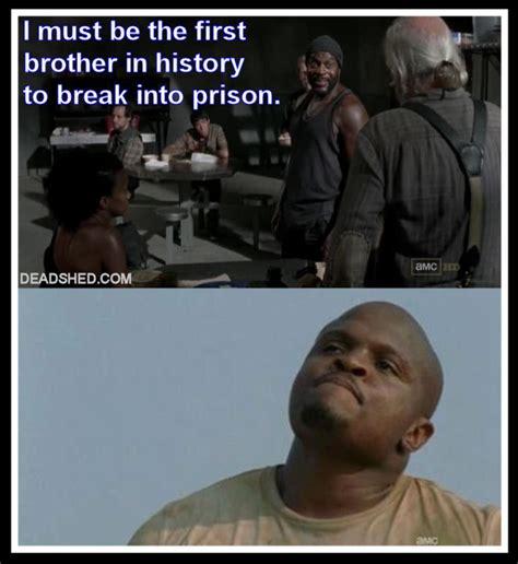 Walking Dead Memes Season 3 - image the walking dead season 3 meme tyreese history tdog deadshed jpg walking dead wiki