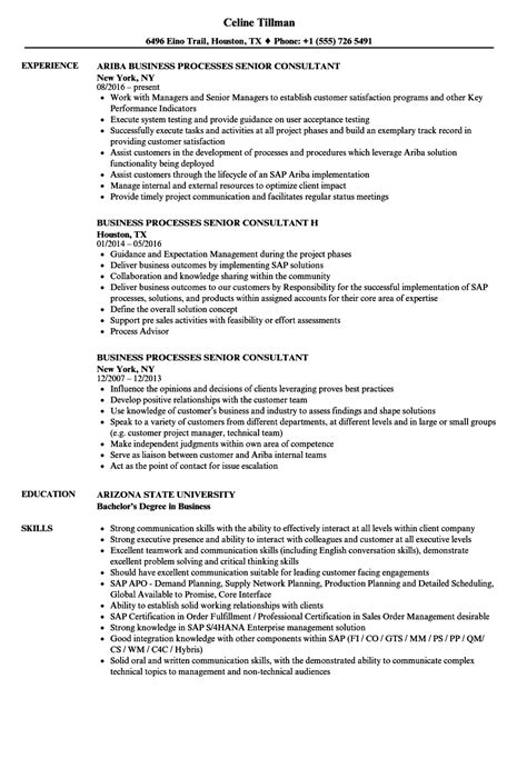Business Consultant Resume by Business Processes Senior Consultant Resume Sles