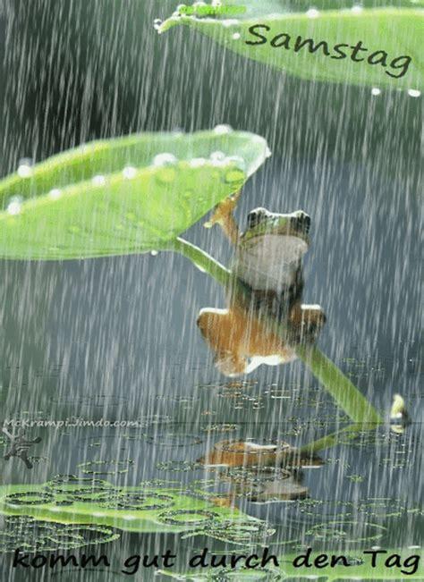 pin von luise hesse auf froschkoenig bilder regen