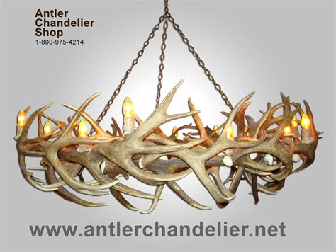 Antler Chandelier Shop by Real Antler Mule Deer Elk Chandelier 14
