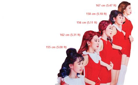 Who Are The Tallest And The Shortest Apink? • Kpopmap