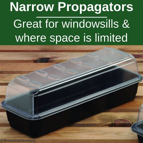 windowsill propagator propagators
