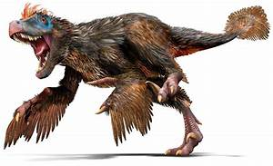 Velociraptor | Mesozoic Wiki | FANDOM powered by Wikia  Velociraptor