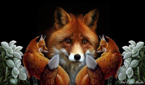 Animated Fox Wallpaper - fox wallpaper free wallpapersafari