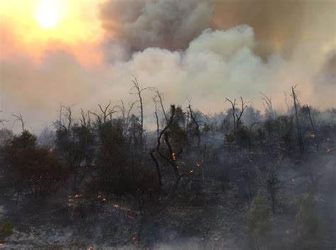 carr fire   percent contained