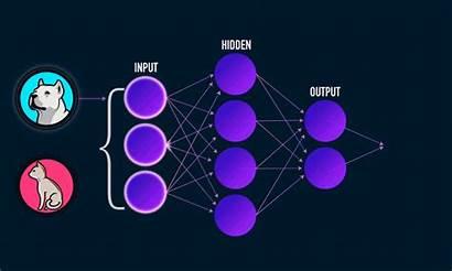 Neural Networks Nn Understanding Science Processing Data