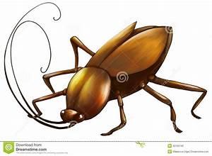 Cockroach digital art stock illustration. Image of drawn ...
