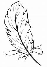 Feathers Pages Coloring sketch template