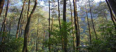 taman hutan raya juanda harga tiket masukalamatrute