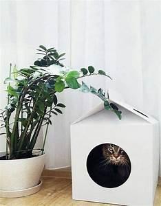 Maison Pour Chat Extérieur : des id es cr atives pour g ter votre chat astuces bricolage ~ Premium-room.com Idées de Décoration