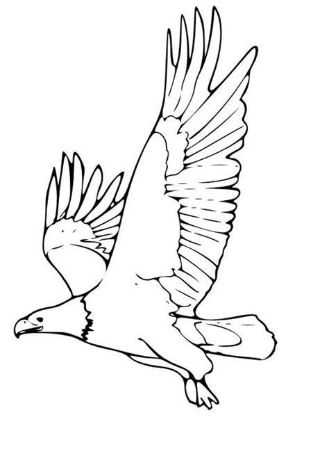 imprime le dessin  colorier daigle