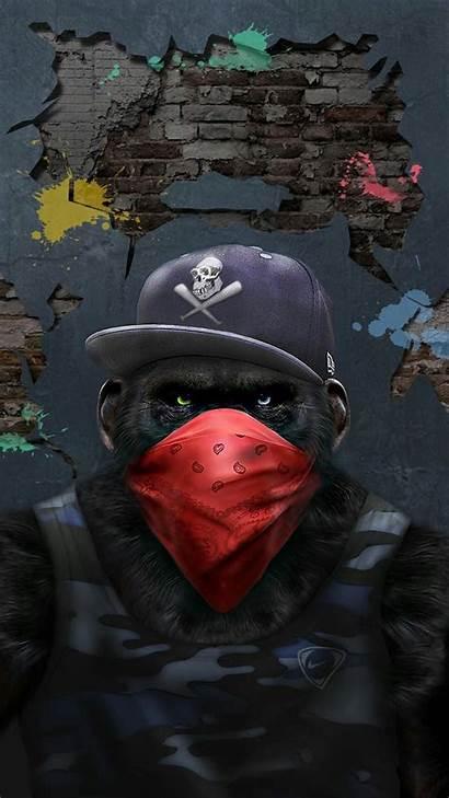 Gangster Dope Wallpapers Iphone Gangsta Monkey Gorilla