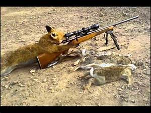 top 10 sniper kill competition - YouTube