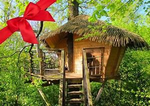 Comment Faire Une Cabane Dans Les Arbres : cabane dans les arbres parler d 39 amour ~ Melissatoandfro.com Idées de Décoration
