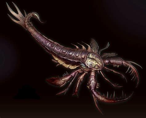 Scorpion Animal Wallpaper - scorpions animals wallpaper www pixshark images