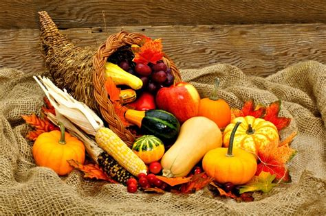 What Is A Cornucopia? Wonderopolis