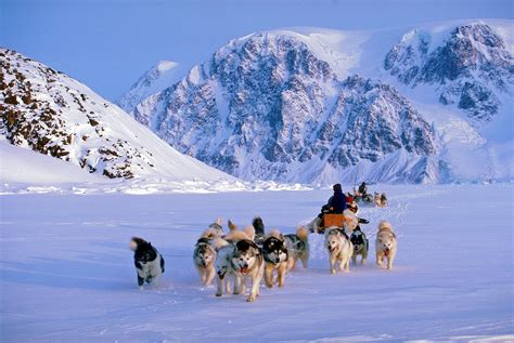 Your Guide to our Guided Dogsled Trips | Dogsledding Trips ...