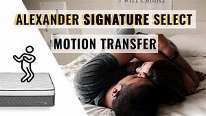 alexander signature select mattress motion transfer youtube With alexander signature select