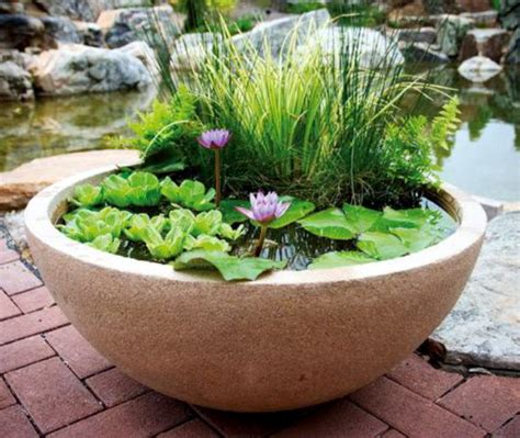 patio ponds container water gardens from aquascape 174
