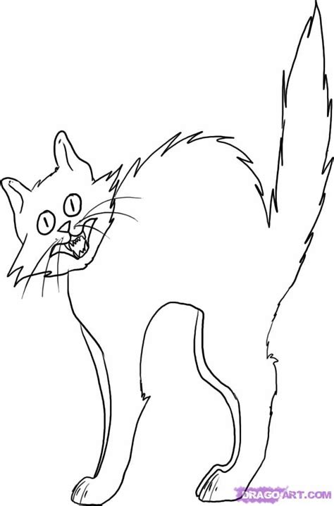 halloween cat drawing festival collections