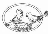 Pigeon Coloring Pages Pigeons Animated Coloringpages1001 Pets Lovely Picgifs Forkids Gifs Categories Similar sketch template