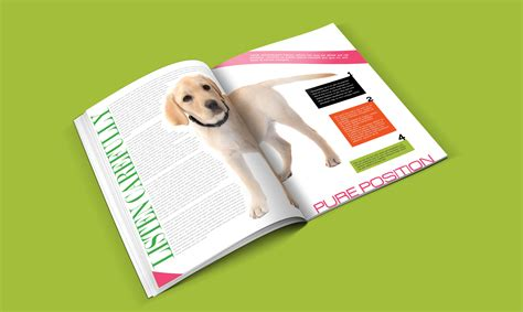 Home Design Catalogue Pdf by Dogs Catalogue Design Template In Ai Indd Pdf Format