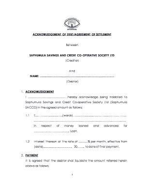 editable acknowledgement  debt format fill print