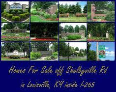 1000 images about homes for sale in louisville ky on