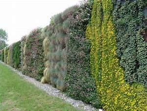 Mur Végétal Anti Bruit : vegetalisation mur autoporteur brise vue liaison v g tale ~ Premium-room.com Idées de Décoration