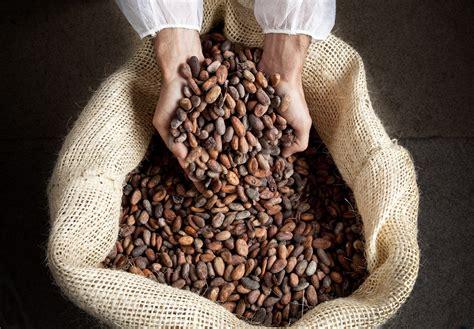 favarger chocolat la qualite superieur du chocolat