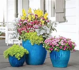 Blumenkübel Bepflanzen Sommer : blumenk bel bepflanzen vorschl ge zinnwanen eimer blumen gerbera g nsebl mchen salbei ~ Eleganceandgraceweddings.com Haus und Dekorationen