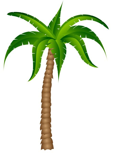 Clipart Palm Tree Palm Tree Clipart Transparent Background Pencil And In
