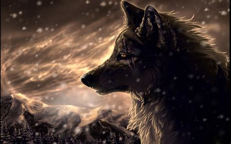 Wolf Wallpaper by Wolf Wallpapers Wallpaper Cave