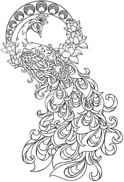 Paisley Peacock Coloring Pages for Adults Printable