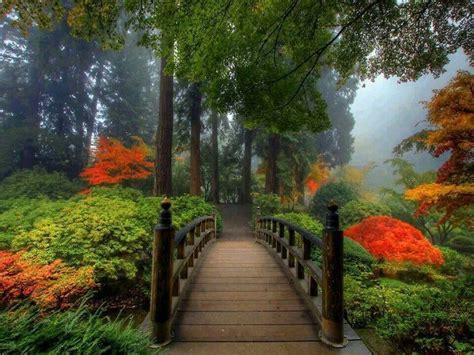 japanese garden in portland oregon portland japanese garden japanese garden pinterest