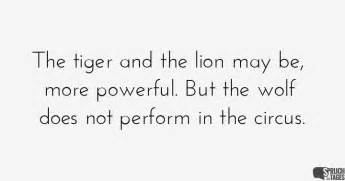 wolf sprüche the tiger and the may be more powerful but the wolf does not perform in the circus