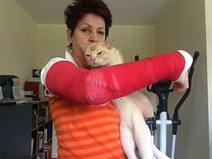 Wie Fange Ich Eine Katze : wie ich zum katzenopfer wurde abenteuer katze ~ Markanthonyermac.com Haus und Dekorationen