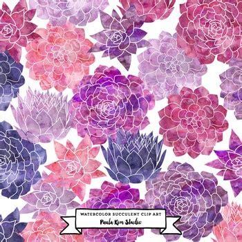 succulent flower watercolor clip art pink  purple