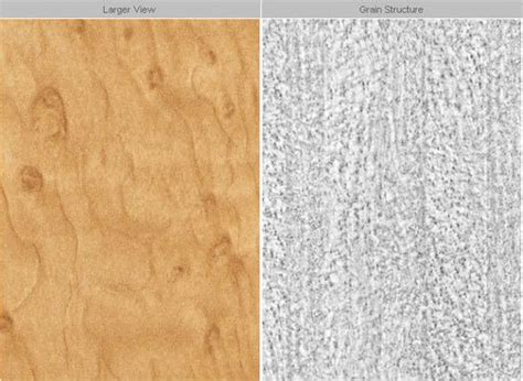 formica panels wall k6123 kiruna bird by formica product