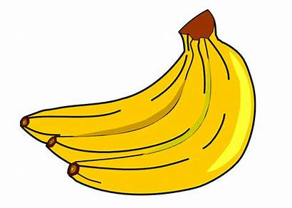 Clipart Banana Template Uncountable Countable Webstockreview Nous