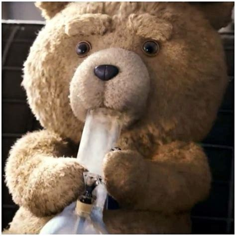 Ted Memes - ted