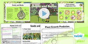 Science  Plants  Seeds And Bulbs Year 2 Lesson Pack 2