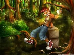 Videojuego Crash Bandicoot Crash Bandicoot Fondo de Pantalla