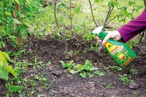 Unkrautvernichter Gegen Unerwünschte Pflanzen Im
