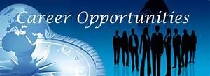 Careers | Creative World Solution | Web Development